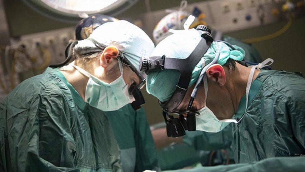 Un donatore di fegato, due trapianti. L'organo si è diviso grazie a una macchina